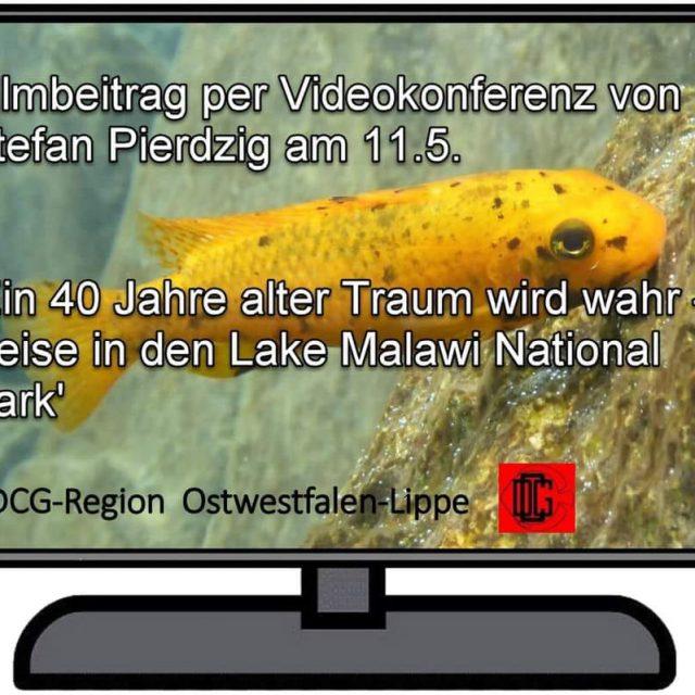 Reise in den Lake Malawi National Park- Online-Treffen der DCG OWL
