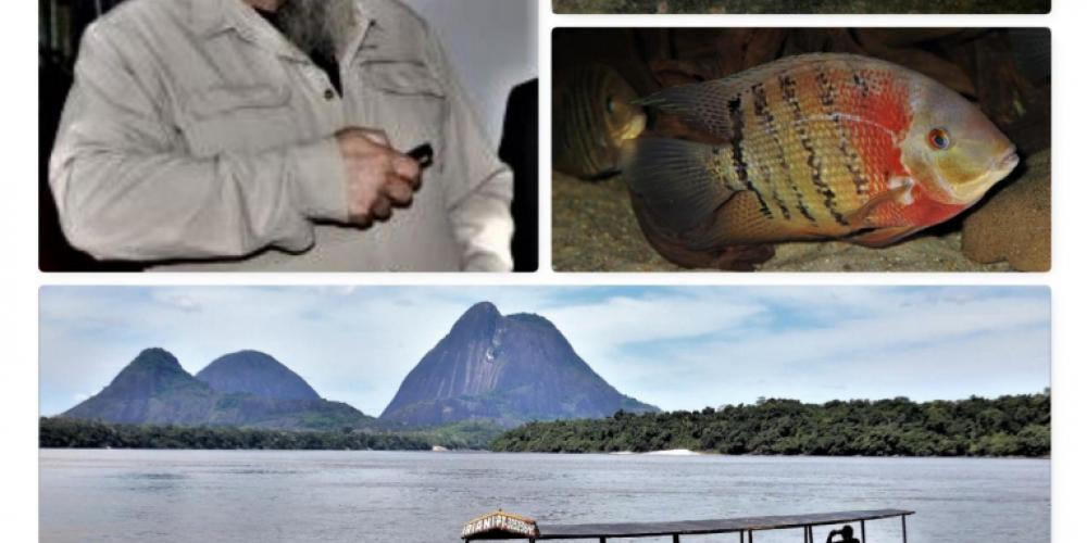 Auf den Spuren kolumbianischer Zierfischfänger